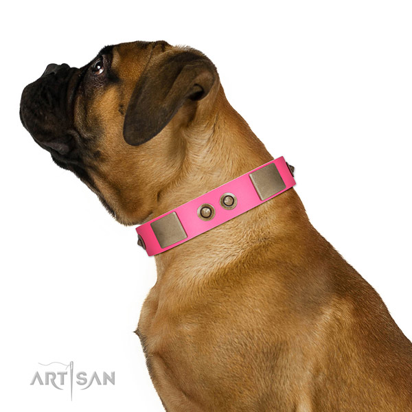 Basic training dog collar of genuine leather with top notch studs