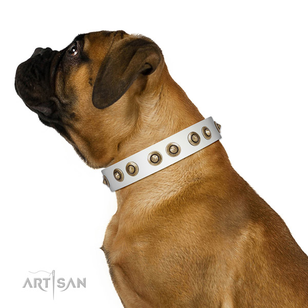 Handy use dog collar of natural leather with inimitable adornments