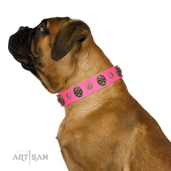 Rust resistant fittings on natural genuine leather dog collar for fancy walking