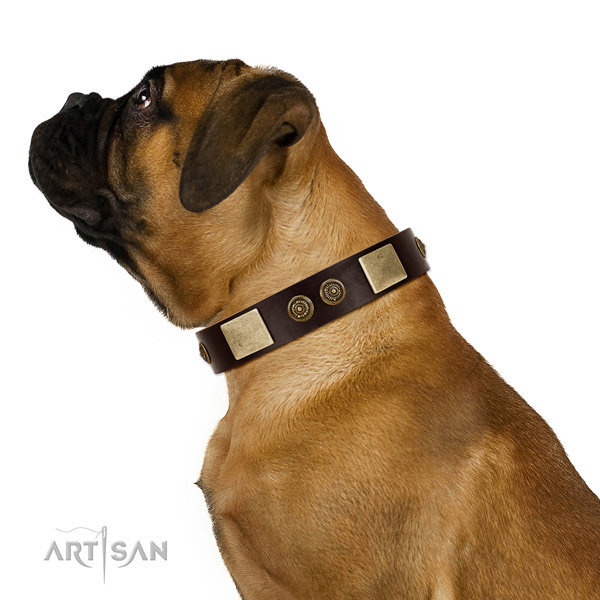 Everyday use dog collar of genuine leather with stunning studs