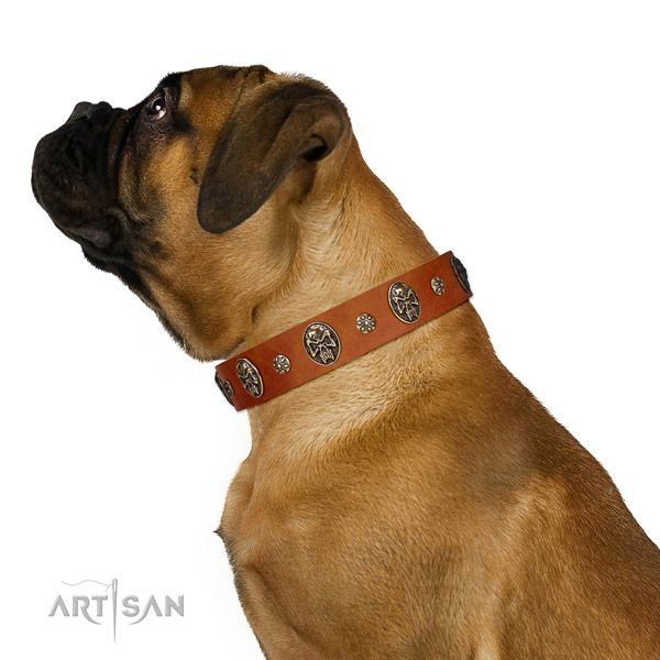 Comfortable wearing dog collar of genuine leather with top notch embellishments