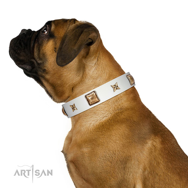 Full grain natural leather collar with embellishments for your stylish dog
