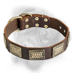 Marvelous Leather Dog Collar that your Billmastiff will like
