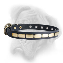 Handmade Bullmastiff collar with brass riveted plates