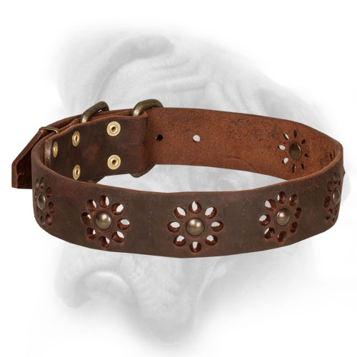 Bullmastiff collar with flower adornment