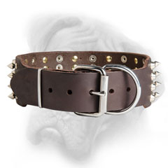 Wide leather Bullmastiff collar easy to adjust