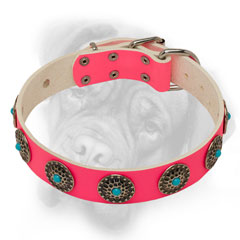 Pink Bullmastiff collar with polished edges