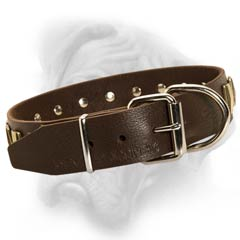 Quality leather Bullmastiff collar with strong buckle