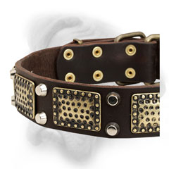 Stylish Bullmastiff collar with pyramids and plates