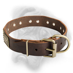 Awesome and Fancy Bullmastiff breed collar