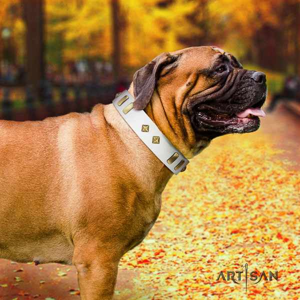 Bullmastiff daily walking genuine leather collar with studs for your doggie
