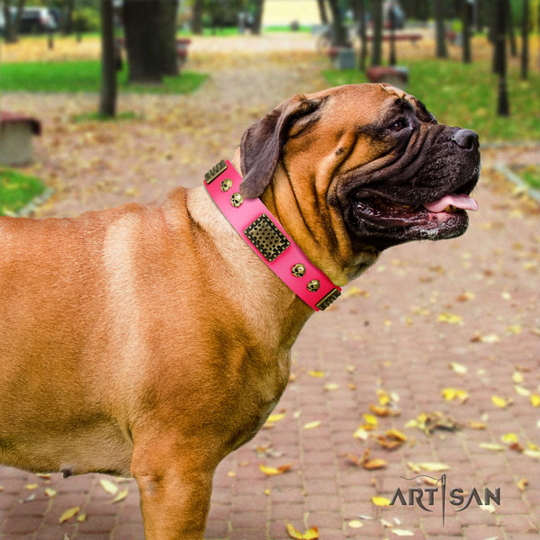 Bullmastiff embellished full grain natural leather dog collar for your lovely pet