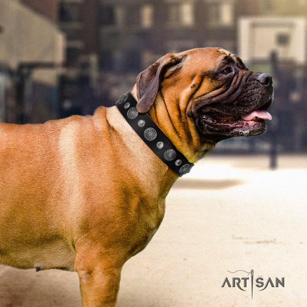 Bullmastiff leather dog collar with adornments for your handsome doggie