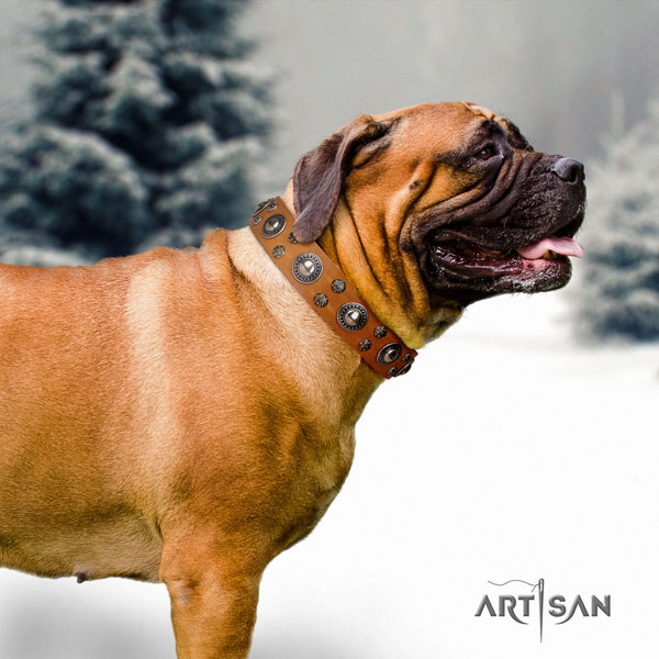 Bullmastiff adorned leather dog collar for your lovely dog