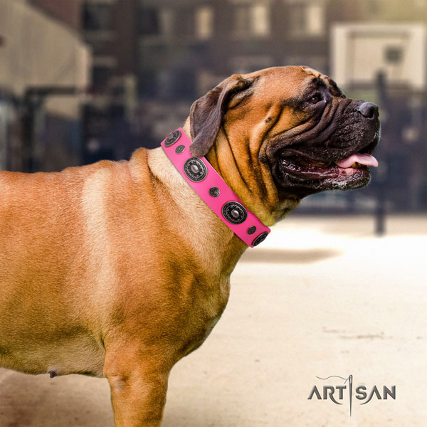 Bullmastiff embellished natural genuine leather dog collar for your handsome canine