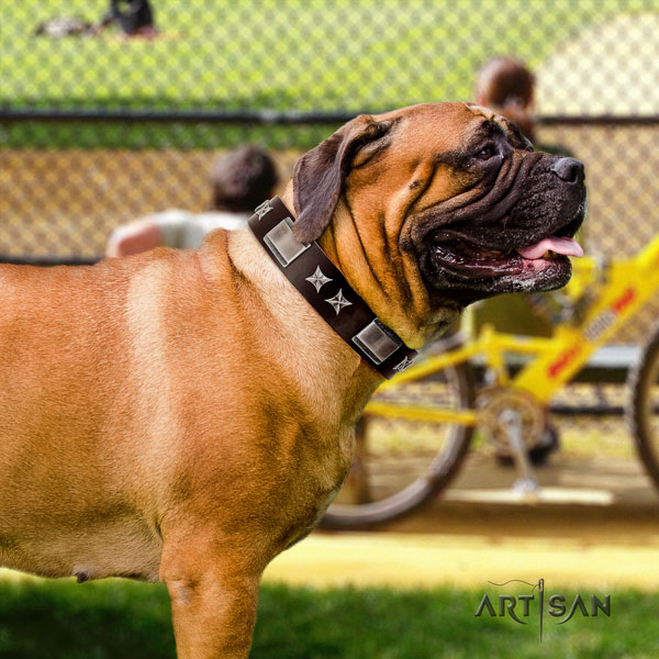 Bullmastiff natural genuine leather dog collar with studs for your beautiful canine