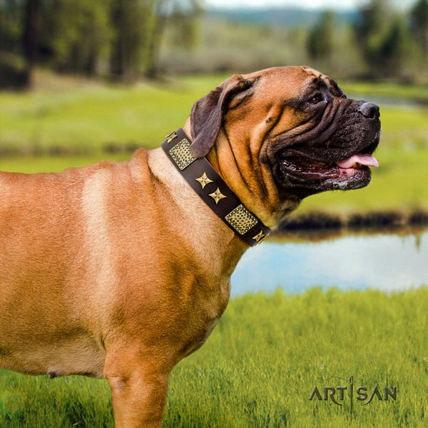 Bullmastiff decorated genuine leather dog collar for your stylish canine