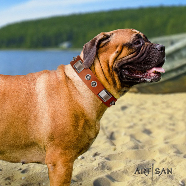 Bullmastiff full grain natural leather dog collar with adornments for your handsome four-legged friend