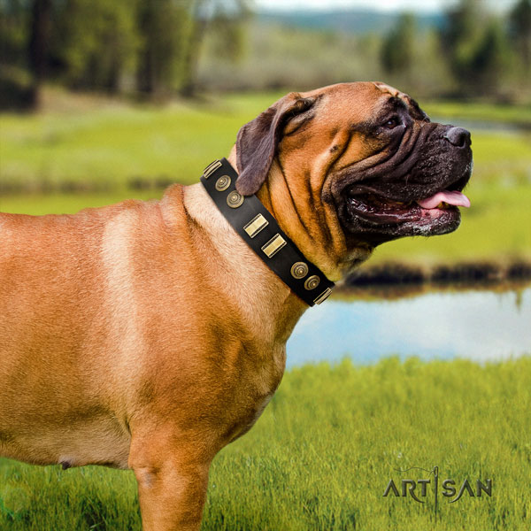 Bullmastiff leather dog collar with embellishments for your beautiful doggie