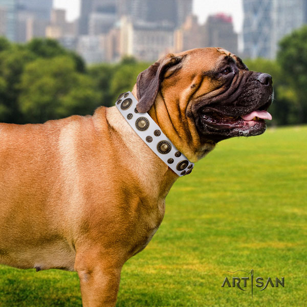 Bullmastiff decorated full grain natural leather dog collar for your stylish doggie