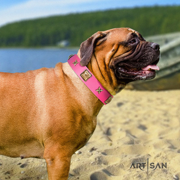 Bullmastiff stylish walking genuine leather collar with embellishments for your pet
