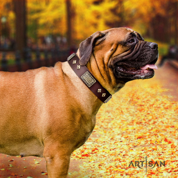 Bullmastiff decorated leather dog collar for your handsome dog