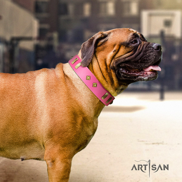 Bullmastiff easy wearing leather collar with studs for your doggie