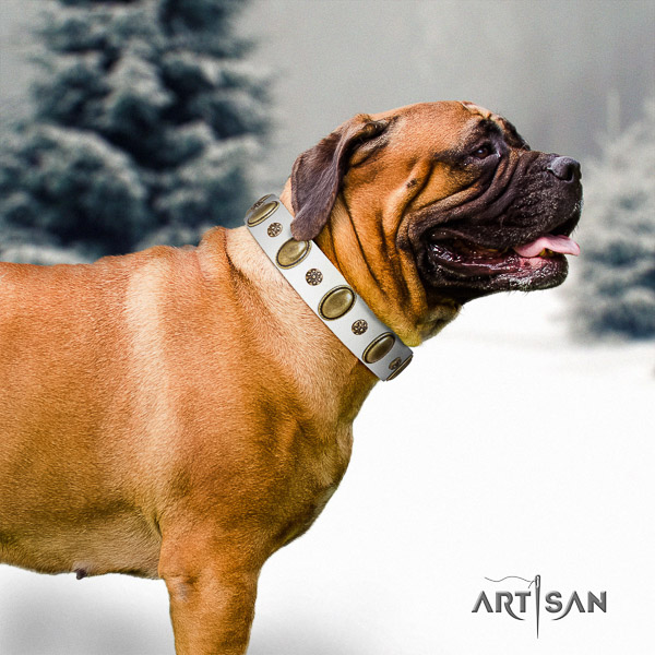 Bullmastiff comfy wearing genuine leather collar with embellishments for your canine
