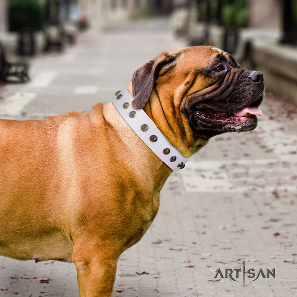 Bullmastiff decorated natural leather dog collar for your handsome canine