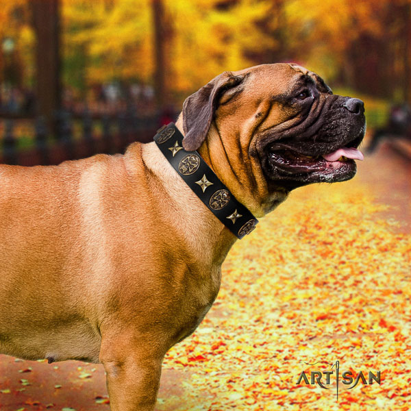 Bullmastiff walking full grain natural leather collar with adornments for your pet