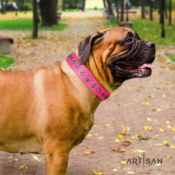 Bullmastiff genuine leather dog collar with embellishments for your beautiful dog