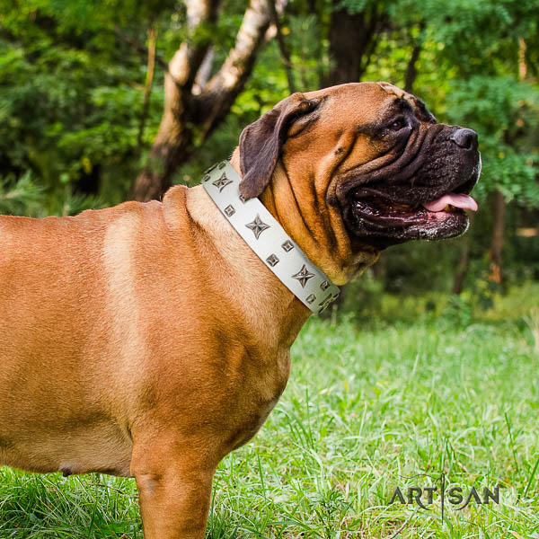 Bullmastiff fashionable full grain leather dog collar with embellishments for stylish walking