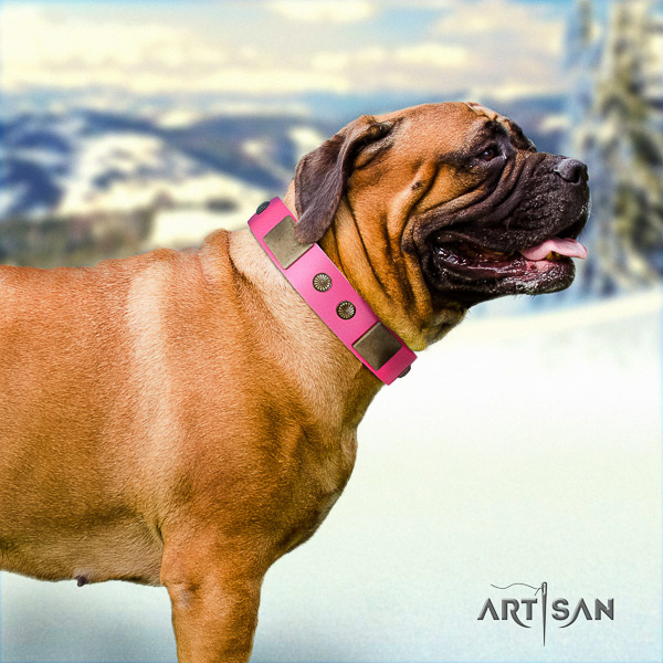 Bullmastiff easy wearing natural leather collar with embellishments for your pet