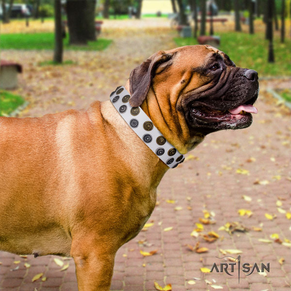 Bullmastiff studded leather dog collar for your impressive four-legged friend
