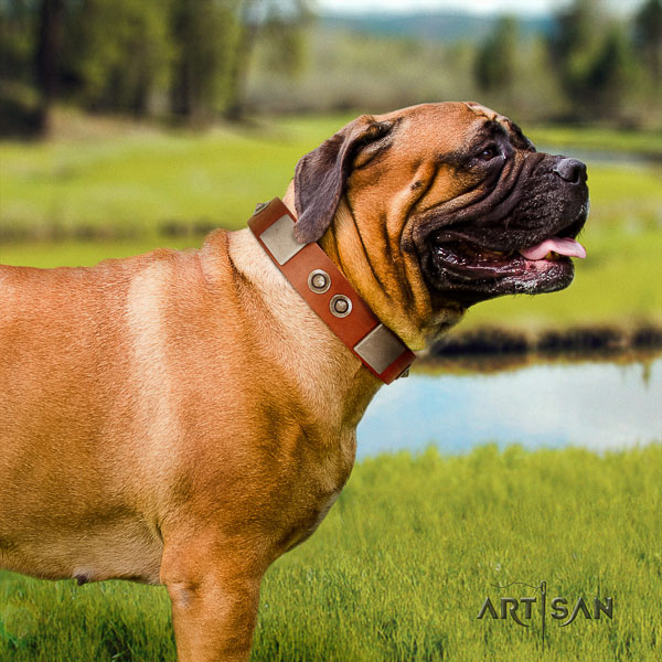 Bullmastiff handy use natural leather collar with decorations for your canine