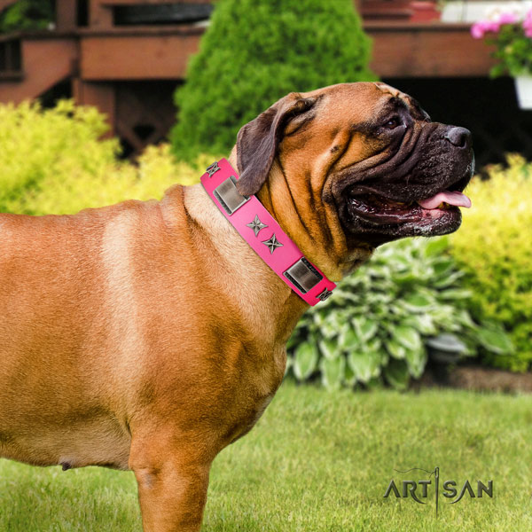 Bullmastiff full grain natural leather dog collar with studs for your impressive canine