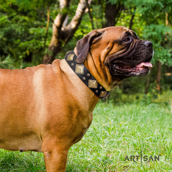 Bullmastiff adorned leather dog collar for your handsome pet