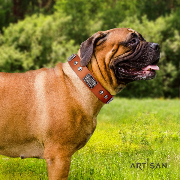 Bullmastiff decorated genuine leather dog collar for your lovely four-legged friend