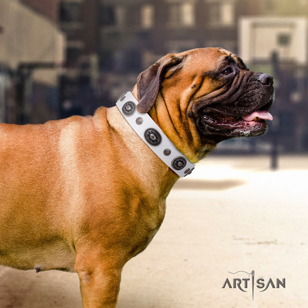 Bullmastiff adorned genuine leather dog collar for your impressive canine
