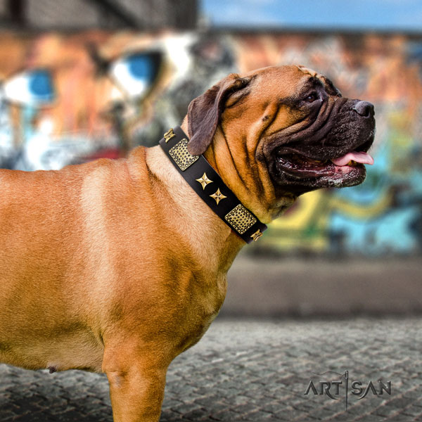 Bullmastiff adorned genuine leather dog collar for your stylish doggie