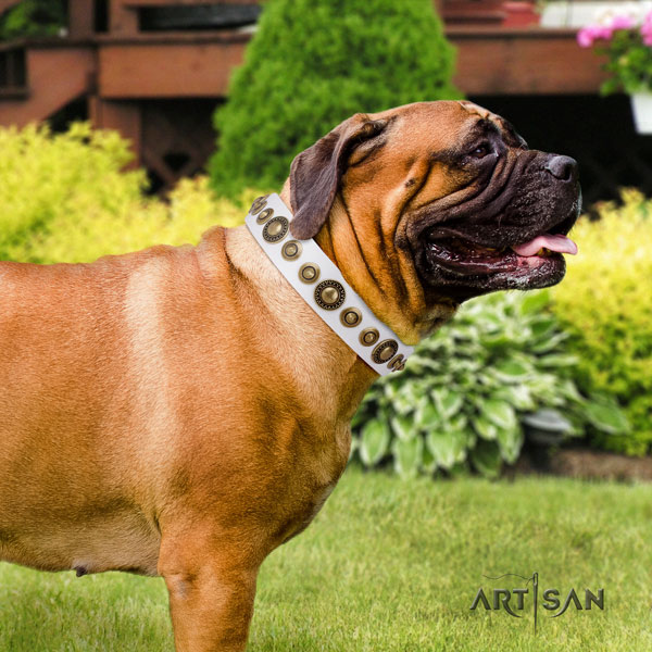 Bullmastiff adorned full grain leather dog collar for your lovely canine