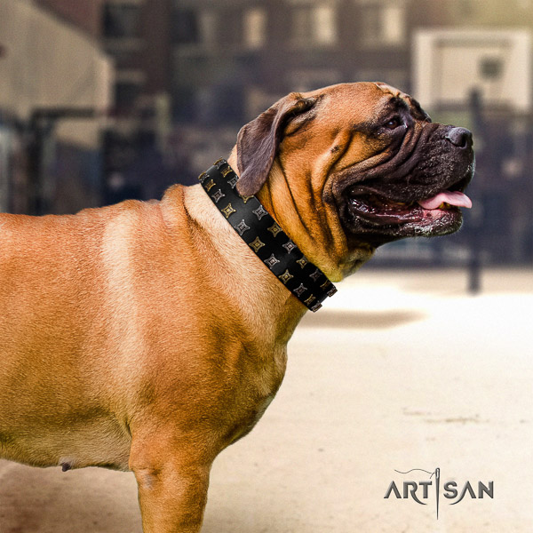 Bullmastiff basic training full grain natural leather collar with decorations for your dog