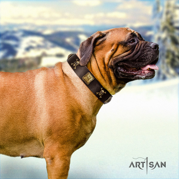 Bullmastiff comfortable wearing natural leather collar with decorations for your dog