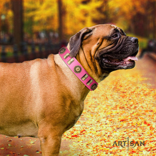 Bullmastiff basic training full grain genuine leather collar with decorations for your pet