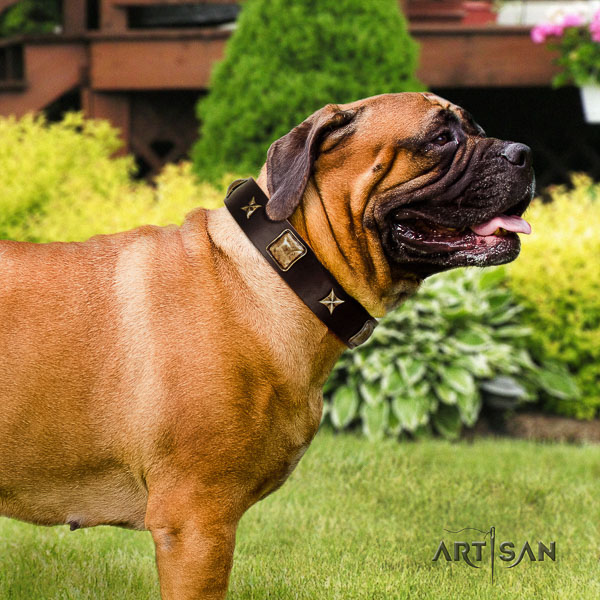 Bullmastiff everyday use genuine leather collar with decorations for your four-legged friend