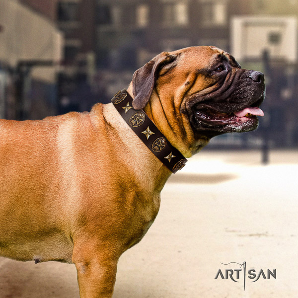 Bullmastiff easy wearing full grain leather collar with decorations for your canine