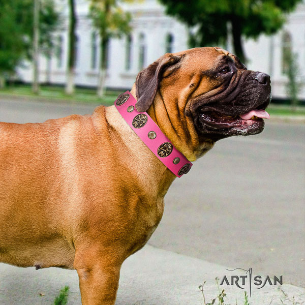 Bullmastiff handy use leather collar with studs for your doggie