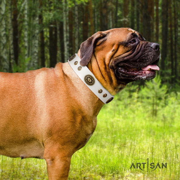 Bullmastiff adorned genuine leather dog collar for your lovely four-legged friend