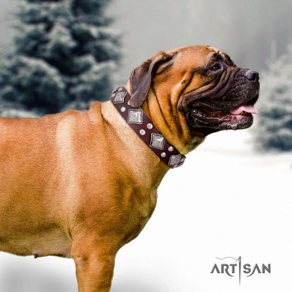 Bullmastiff embellished leather dog collar for your handsome pet
