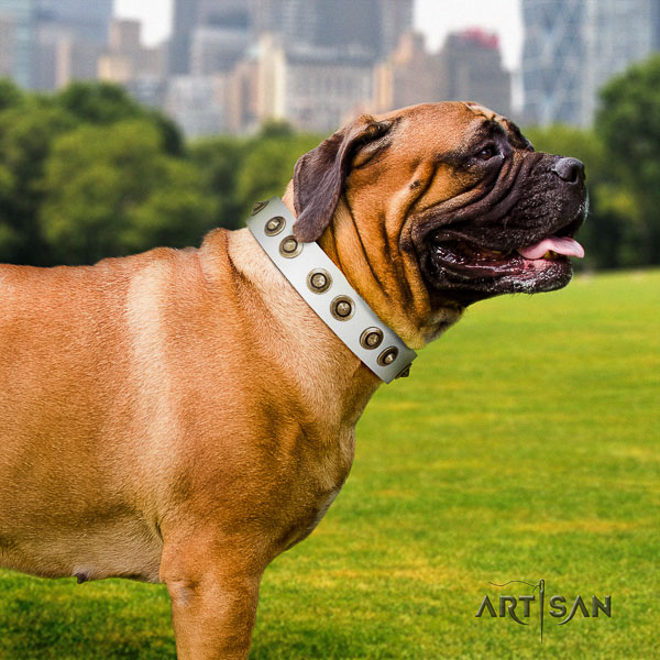 Bullmastiff comfortable wearing genuine leather collar with decorations for your pet
